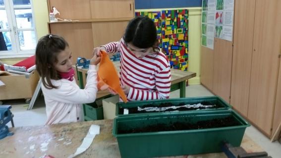 H2-2e-Zwei-Schülerinnen-der-Umwelt-AG-beim-Herrichten-zweier-Balkonkästen-mit-Pflanzerde-und-Samenbändern