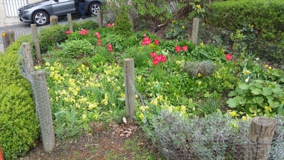 Das Beet am östlichen Parkplatzrand im Frühling