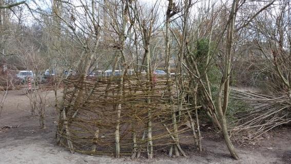 Das Weideniglu auf dem Schulhof nach dem Einflechten von Weidenzweigen im Frühjahr