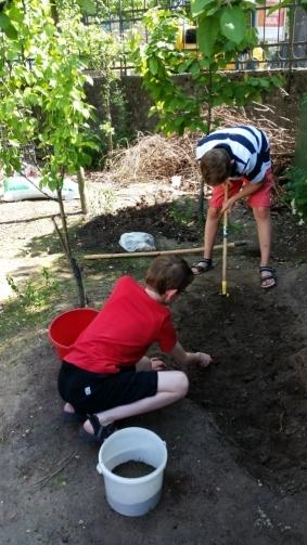 Schüler der Umwelt-AG bei der Gartenarbeit (1)
