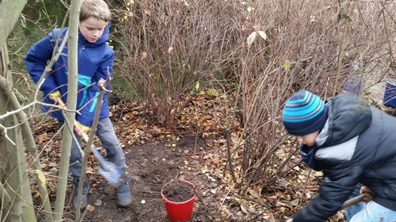 H2-2c-Schüler-der-Umwelt-AG-bei-der-Gartenarbeit-3