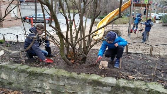 H2-2g-Schüler-der-Umwelt-AG-auf-dem-Schulhofbeet-beim-Einpflanzen-von-Blumenzwiebeln